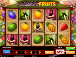 slot igre besplatno Ninja Fruits Play'nGo